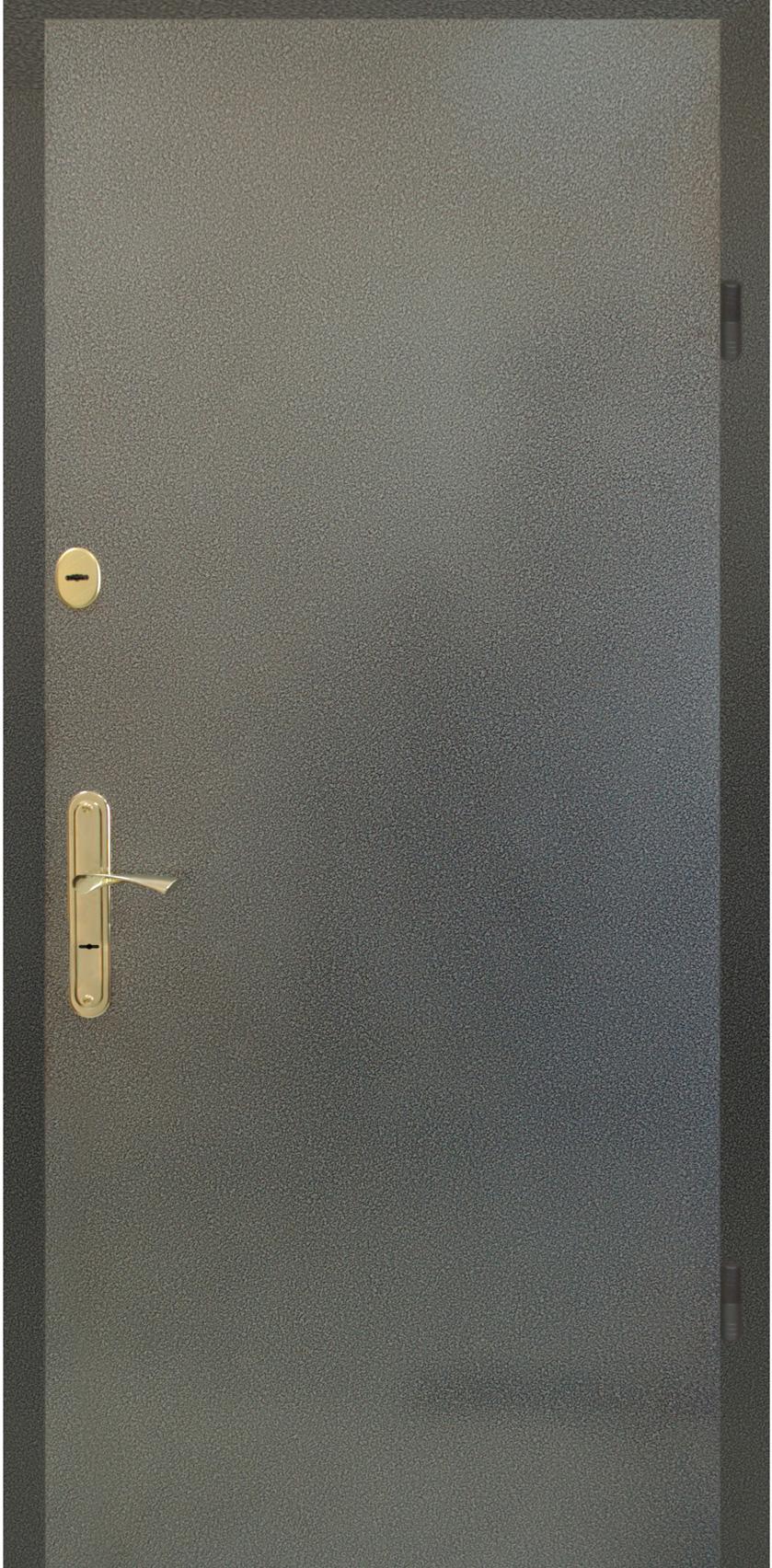 порошковые металлическая дверь
